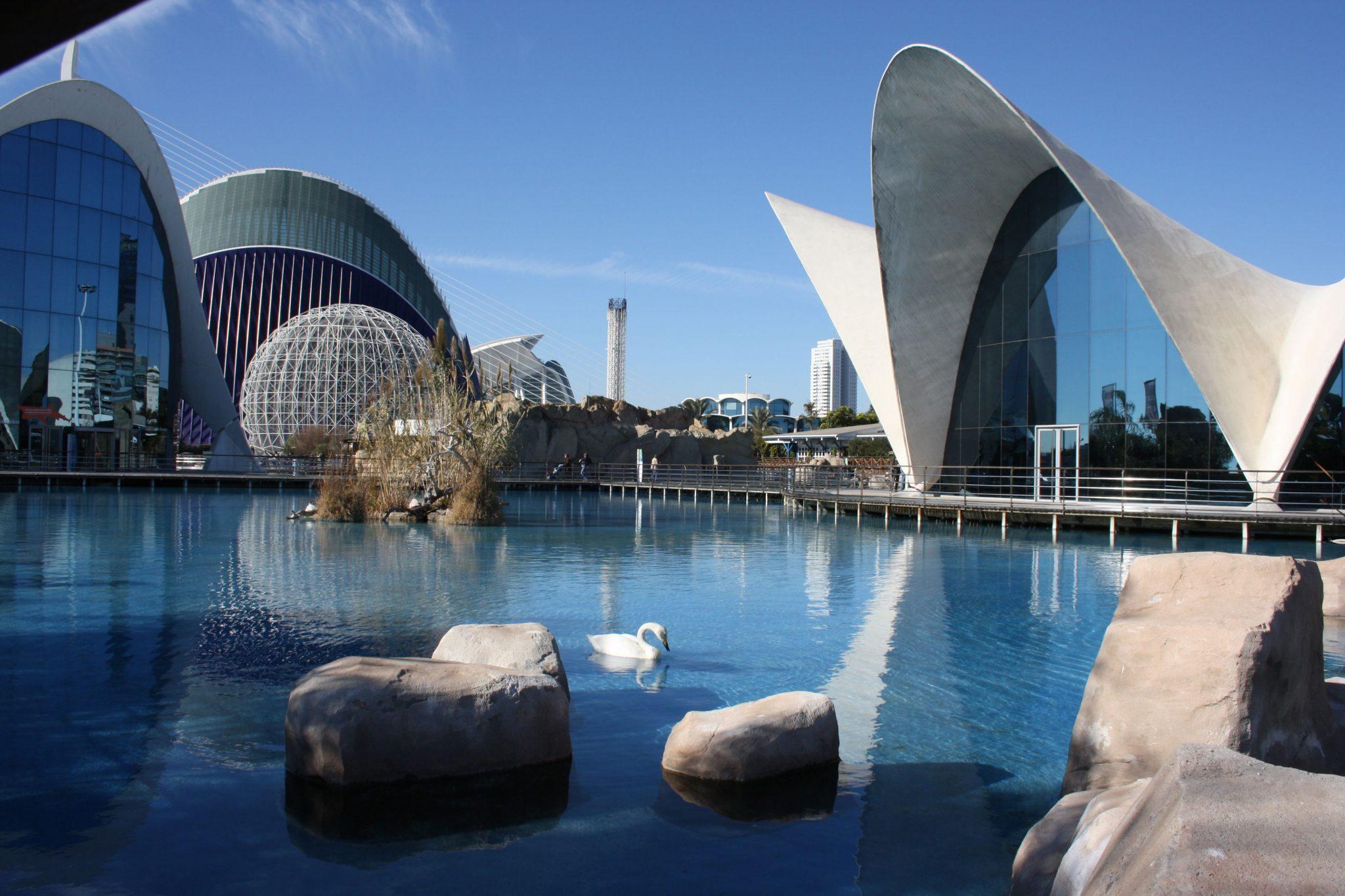 Bugatti Alquiler venta renting coches de lujo en Valencia
