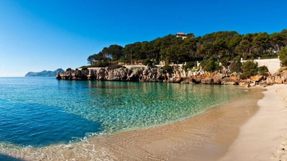 Chevrolet Alquiler venta renting coches de lujo en Mallorca